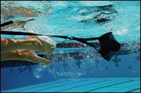 池江璃花子、筋肉、トレーニング