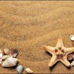 関水渚のスリーサイズは?カップ数や水着画像も調査!