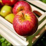 りんごちゃんの昔の写真が可愛い?男前と話題に!本名は?