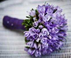 佐藤仁美、細貝圭、結婚、誤報
